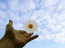 Тайните на благосъстоянието (част 7)